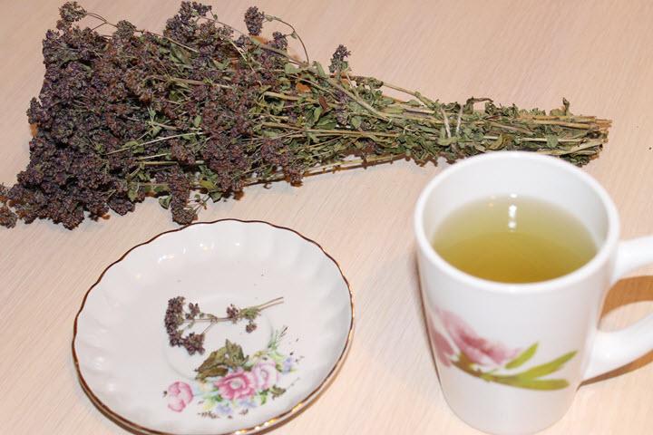 Лечебный чай с душицей