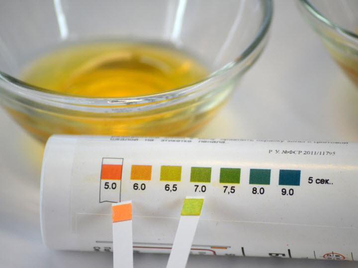 Тест-полоски для исследования мочи в домашних условиях