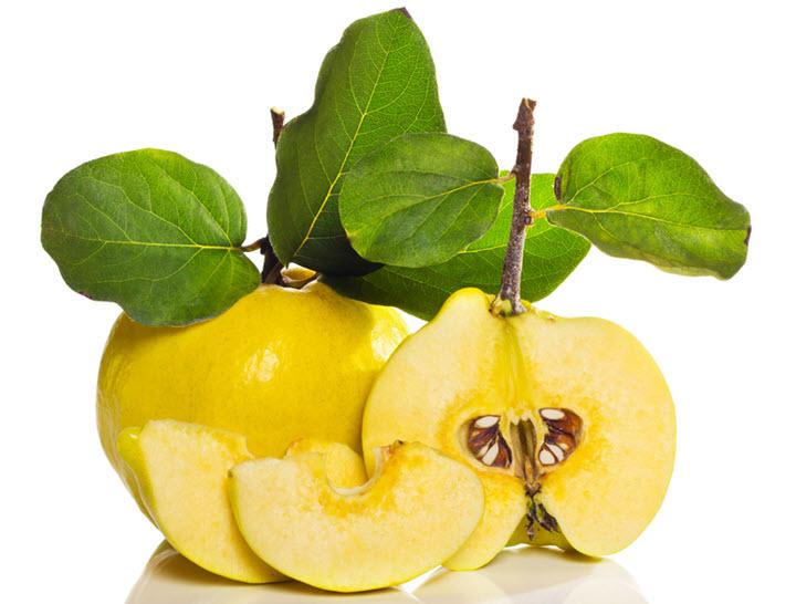 Плоды и листья айвы