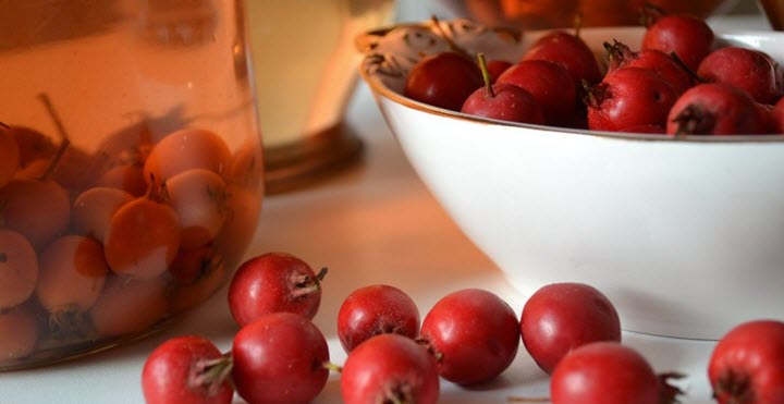 Отвар из ягод боярышника