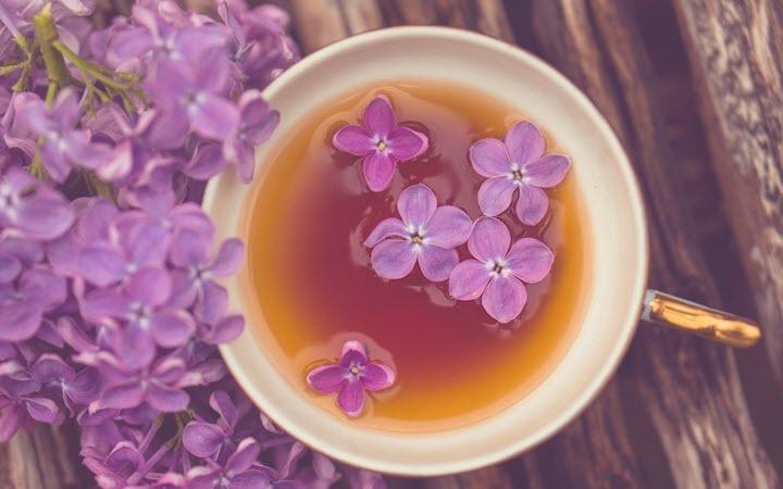 Чай из цветков сирени