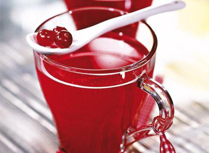 Полезные свойства отвара из ягод брусники
