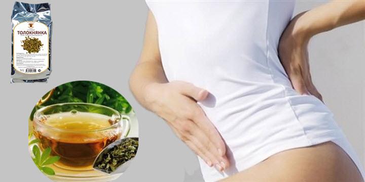 Толокнянка при менструальных болях